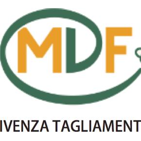MDFLT logo_sito